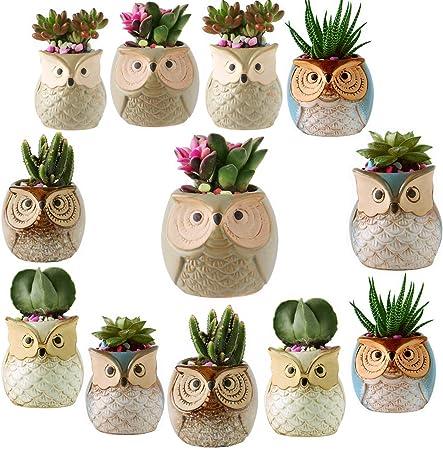 Owl Mini Pots