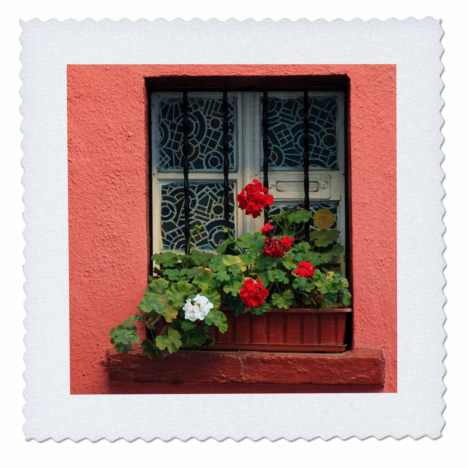 3dRose Danita Delimont - Flowers - Romania, Sighisoara, residential window in old town. Flowers in window - 20x20 inch quilt square (qs_277872_8)