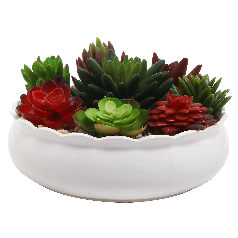 Amazon 7 Inch Round Ceramic Flower Succulent Planter Pot With