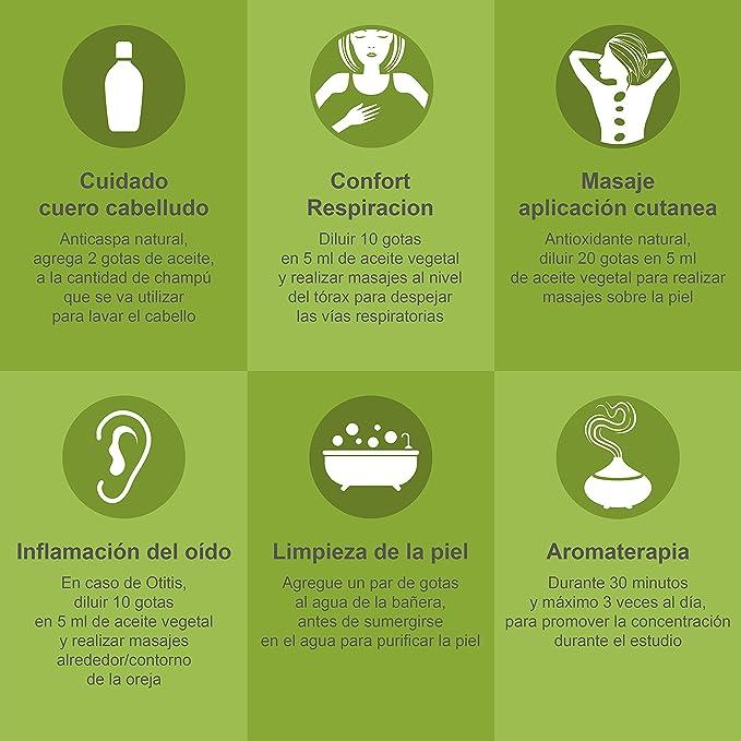 Aceite Esencial de Romero Puro 30 ml, 100% Natural y Bio | Antiestrés Alivia Dolores Musculares Conjestión Nasal Anticaspa | Ideal para Humidificador Ultrasónico Aromaterapia | Fabricado en Francia: Amazon.es: Salud y cuidado personal