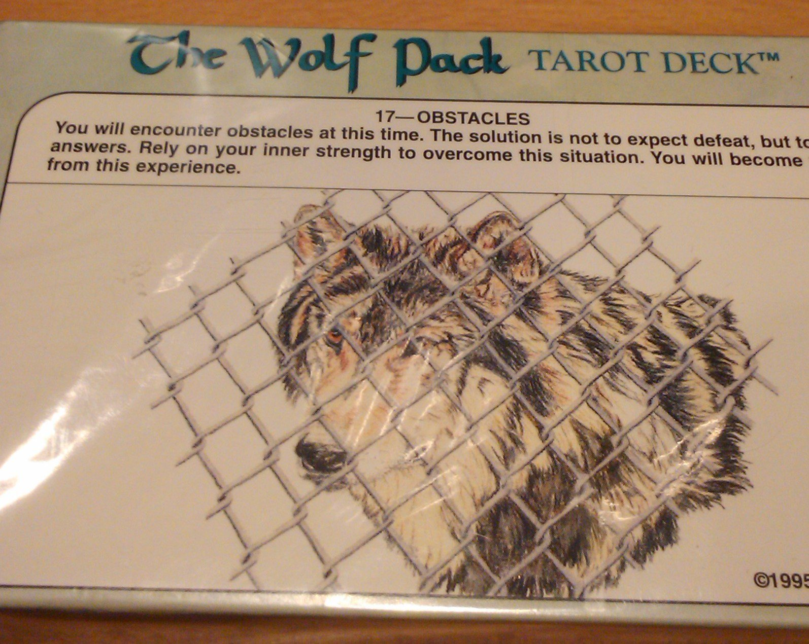 The Wolf Pack Tarot Deck: Amazon.es: Robert Petro: Libros