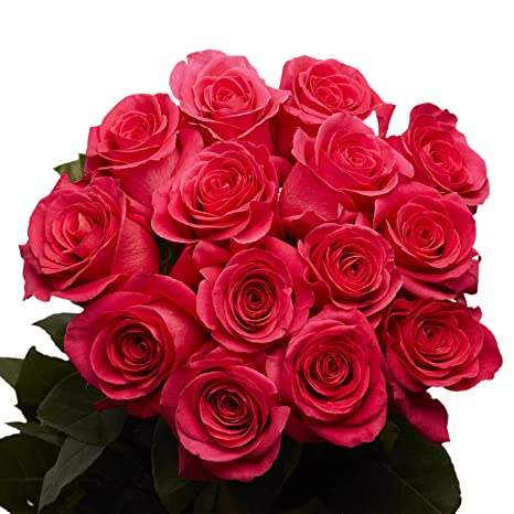 Amazon Com Globalrose 50 Hot Pink Roses Beautiful For