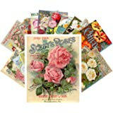Carte Postale 24pcs Flowers Vintage Seed Pockets Gardens and Roses