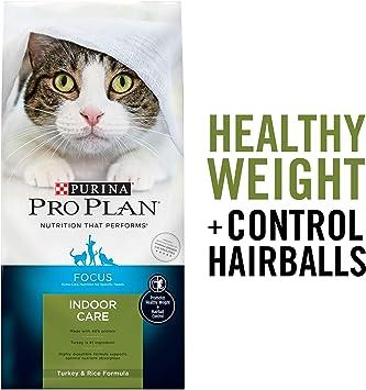 Amazon.com: Purina Pro Plan - Alimento seco para gatos y ...