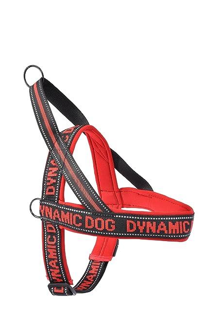 Camon Arnés de Neopreno Dynamic dc199a Contorno 35 cm Color Rojo ...