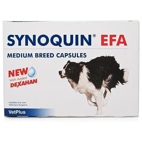 Vetplus Synoquin EFA - 120 Cápsulas - tamaño mediano Perro