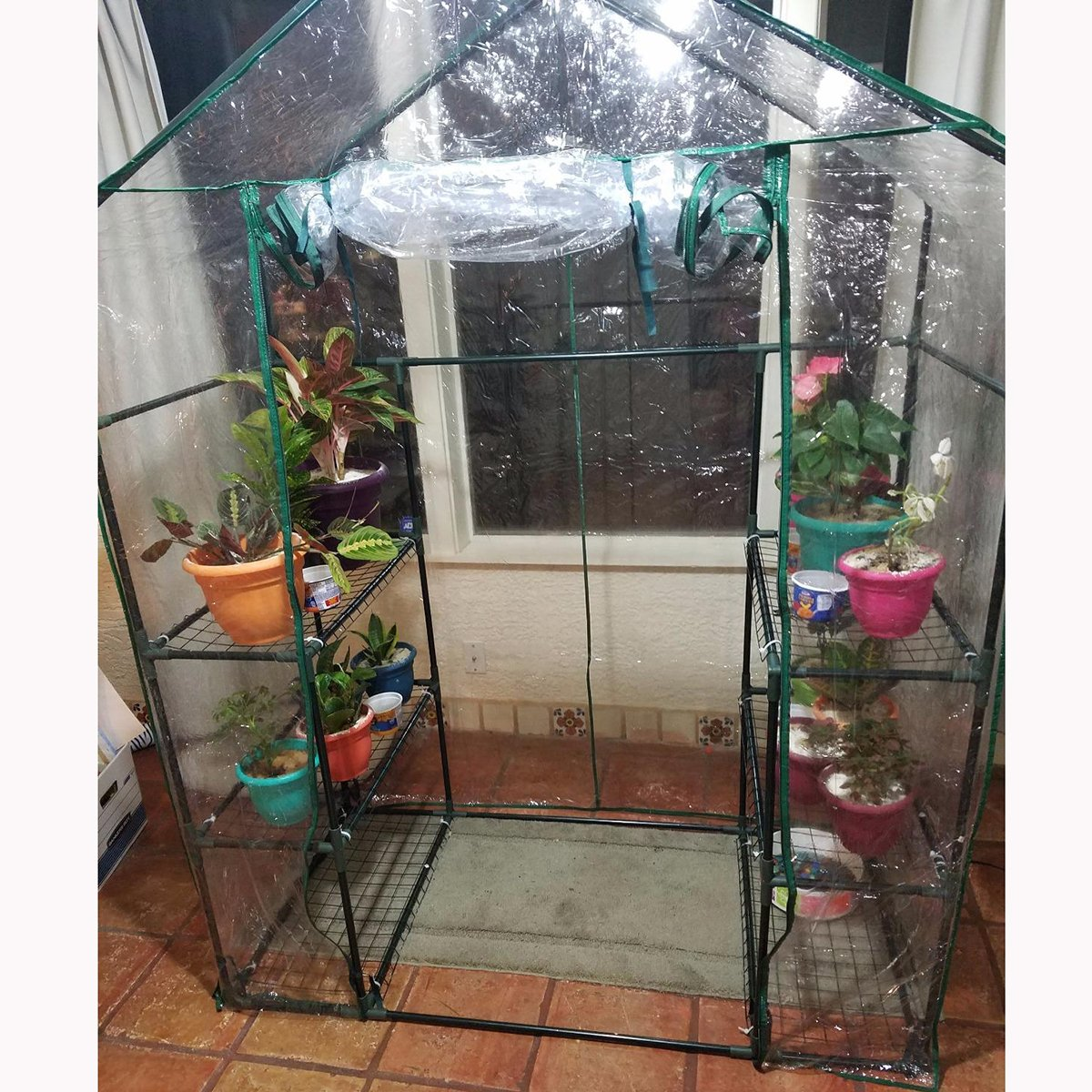Quictent Greenhouse Mini Walk-in 3 tiers 6 shelves 102lbs Max Weight Capacity Portable Plant Garden Outdoor Green House 56''x29''x77'' by Quictent (Image #8)