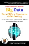 Big Data para CEOs y Directores de Marketing: Como dominar Big Data Analytics en 5 semanas para directivos