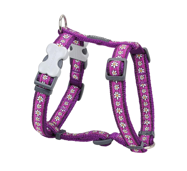 Red Dingo Designer Dog Harness, Medium, Daisy Chain Purple