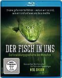 Der Fisch in uns - Die Entwicklungsgeschichte des Menschen [Blu-ray]