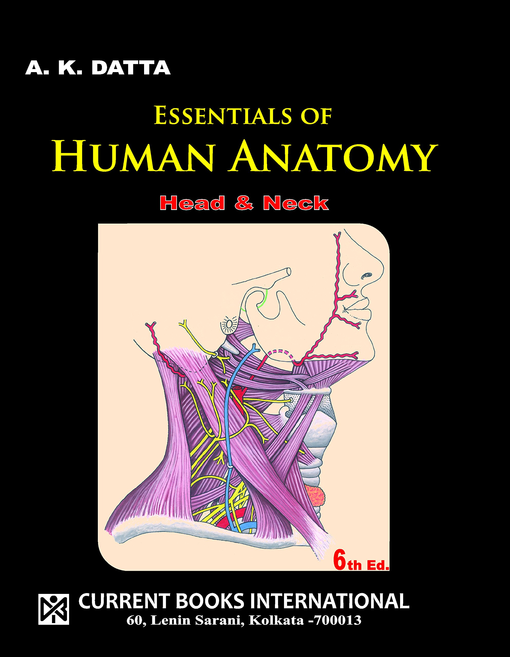 Essentials Of Human Anatomy Head Neck Vol 2 6th Ed A K
