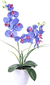Silk Plant Orchids Artificial Flowers,Blue Orchids,Silk Plants for Home Decor Indoor, 12 Head with Two Stems Silk Orchids Sturdy Plastic Flower Pot