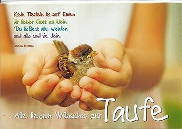 Glückwunschkarte Alle Lieben Wünsche Zur Taufe Spatz In