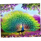 MagiDeal Frameless DIY 5D Diamond Embroidery Painting Cross Stitch Kit Animal Wall Art Painting Picture Craft -Peacock
