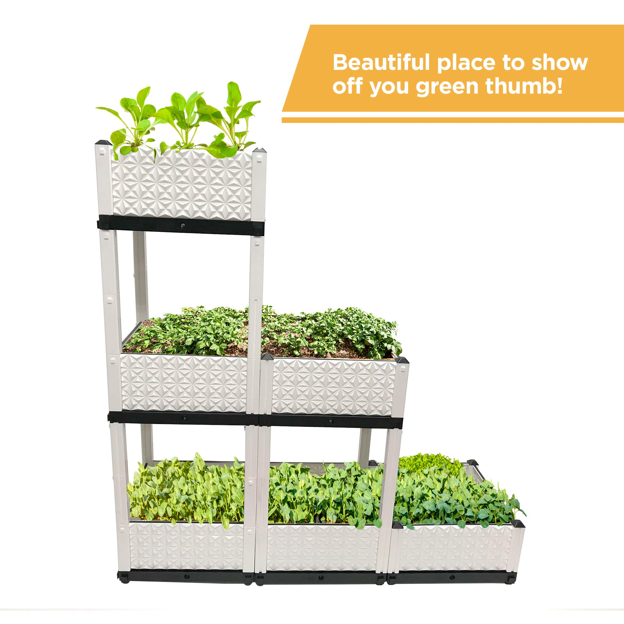 Six Raised Garden Beds for Planting | Each Box Measures 15 X 15 X 9 Inches | Herb Boxes for Indoor Gardening | Elevated Plant Bed for Vegetables and Flowers | Waterproof Rectangular Pots for Outdoor
