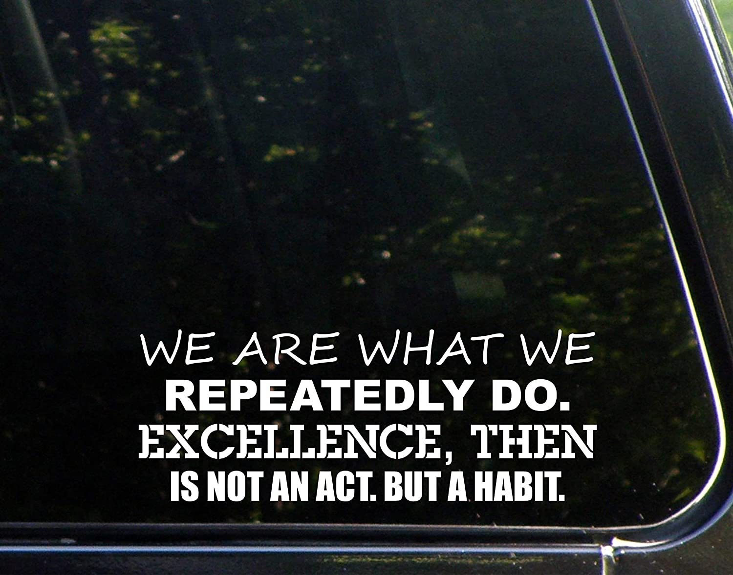"Diamond Graphics We are What We Repeatedly Do. Excellence, Then is Not an Act. But A Habit. (8-3/4"" X 3-1/4"") Die Cut Decal Bumper Sticker for Windows, Cars, Trucks, Laptops, Etc"
