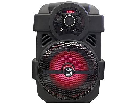 The 8 best mr dj portable speaker