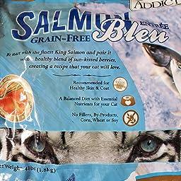 Amazon Com Addiction Salmon Bleu Grain Free Dry Cat Food Lb Dry Pet Food Pet Supplies