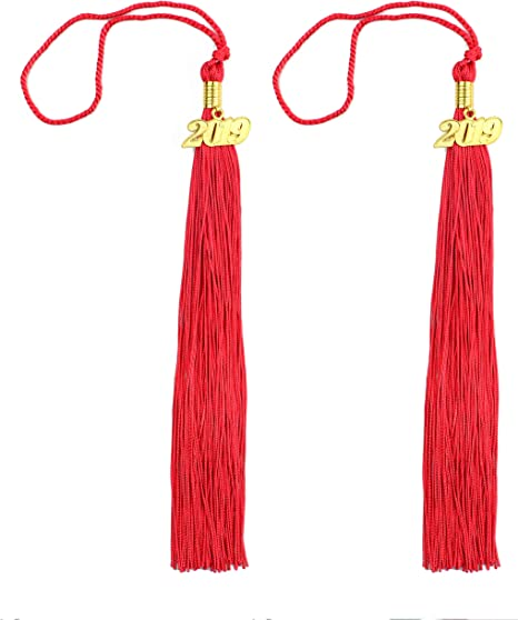 etateta 2pcs 15.7inches//40cm Handmade Silk Graduation Tassel with 2019 Year Charm for Graduation Cap,Graduation Gift,Souvenir Black
