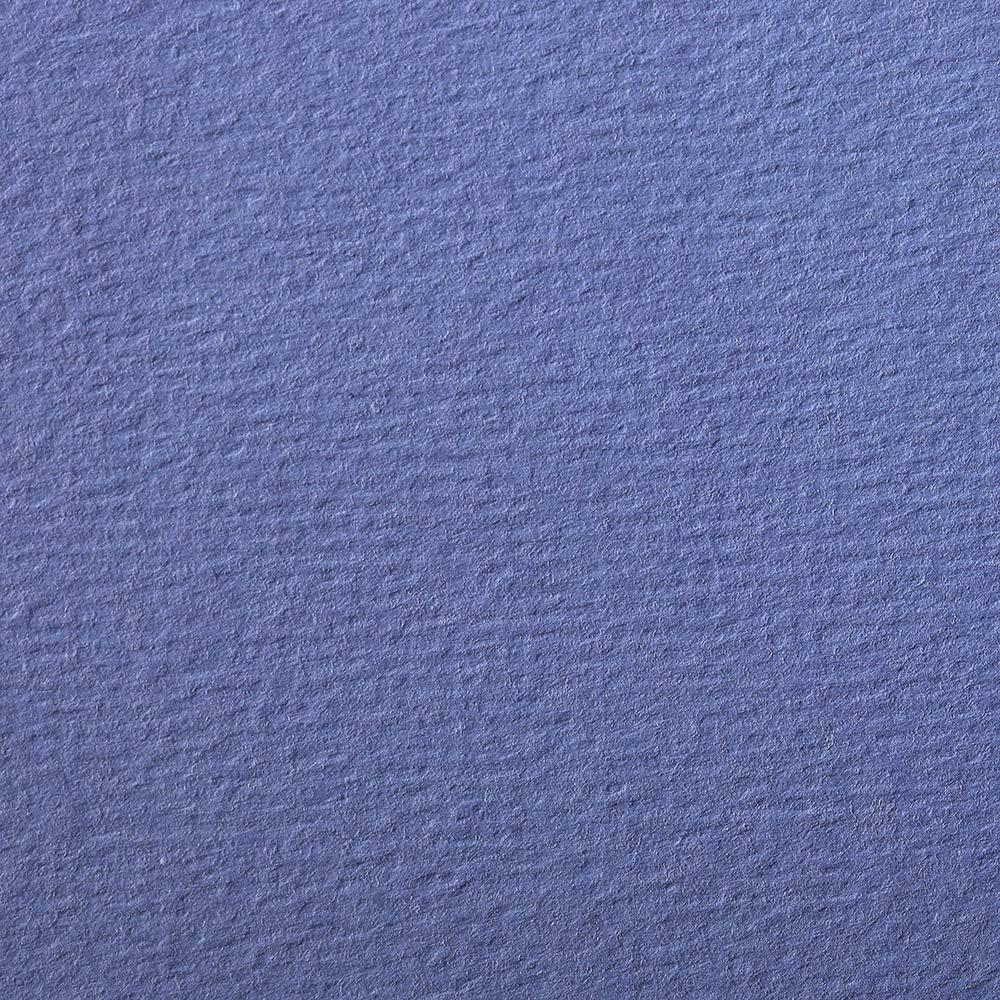 Clairefontaine 93898C Pacchetto Fogli Carta Etival, 29.5 x 21 x 0.6 cm, Blu Lavanda C Rhodia Jardinage