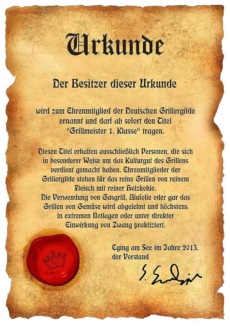 Italienische Pizza Grillsch/ürze mit Urkunde Lustige Motiv Sch/ürze als Geschenk f/ür Grill Fans mit Humor NEU mit gratis Zertifikat