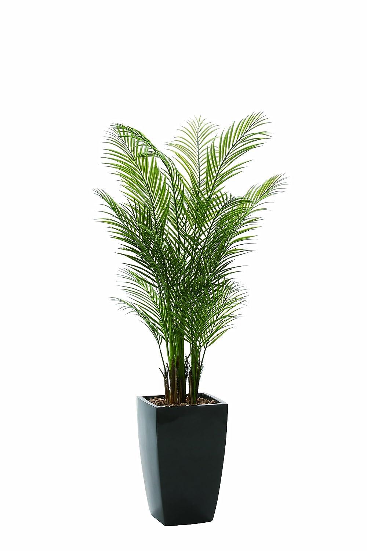 光触媒 アーバンアレカパーム1.7m(ポリ製)【人工観葉植物】 B077N3MJWM