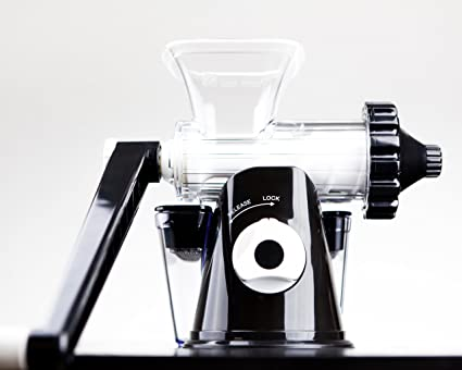 Buy Lexen Wheatgrass Manual Juicer Black Online at Low