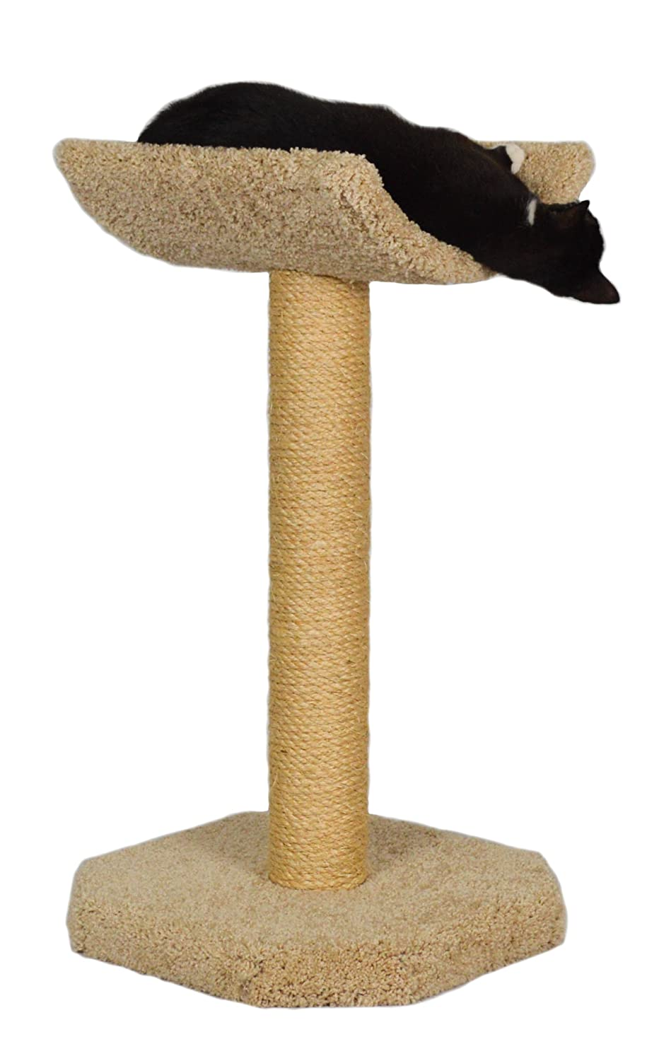 """Molly and Friends Cradle On Top Of A 27"""" Sisal Wrapped Scratching Post"""