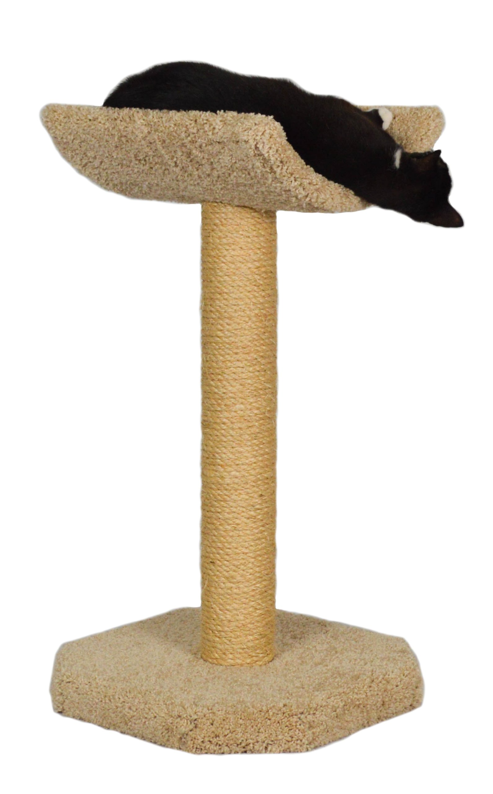 Molly and Friends ''Kitty Cot'' Premium Handmade One Tier Sisal Cat Scratching Post Furniture with Cradle, Model Scr/c, Beige