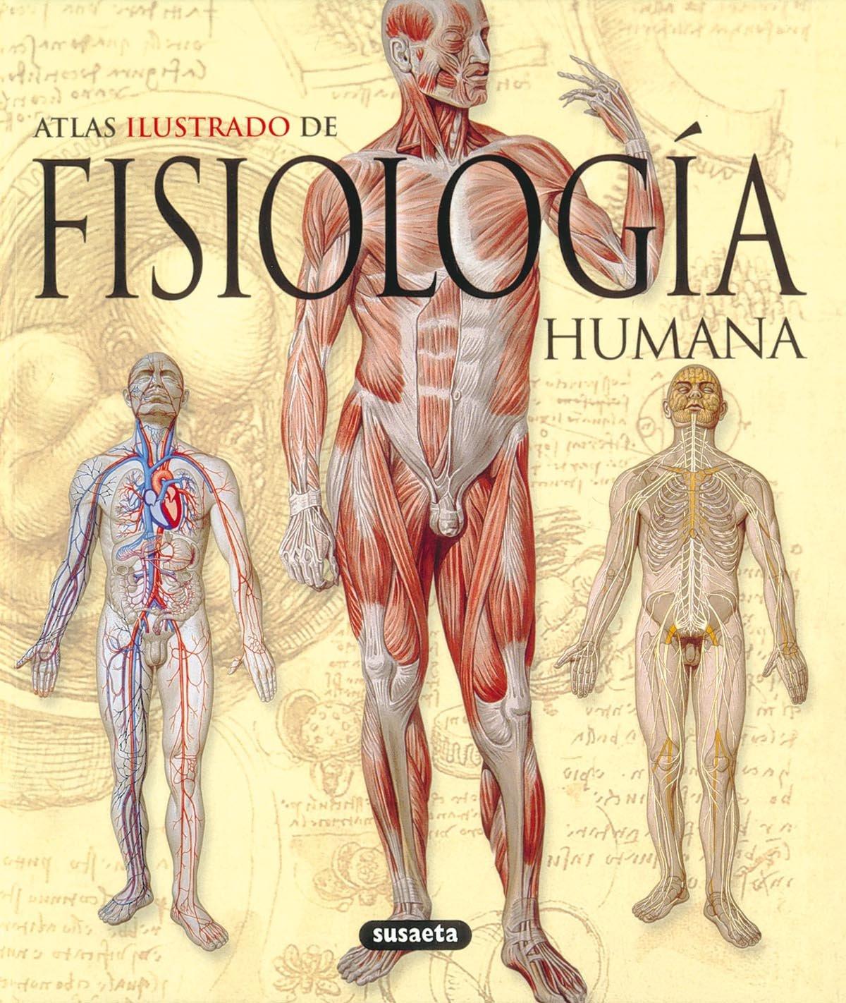 Fisiologia Humana (Atlas Ilustrado): Amazon.es: Susaeta Ediciones ...