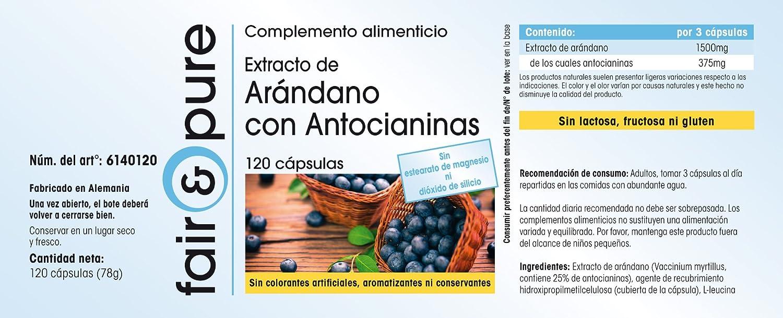 Extracto de arándano con antocianinas - 120 cápsulas veganas: Amazon.es: Salud y cuidado personal