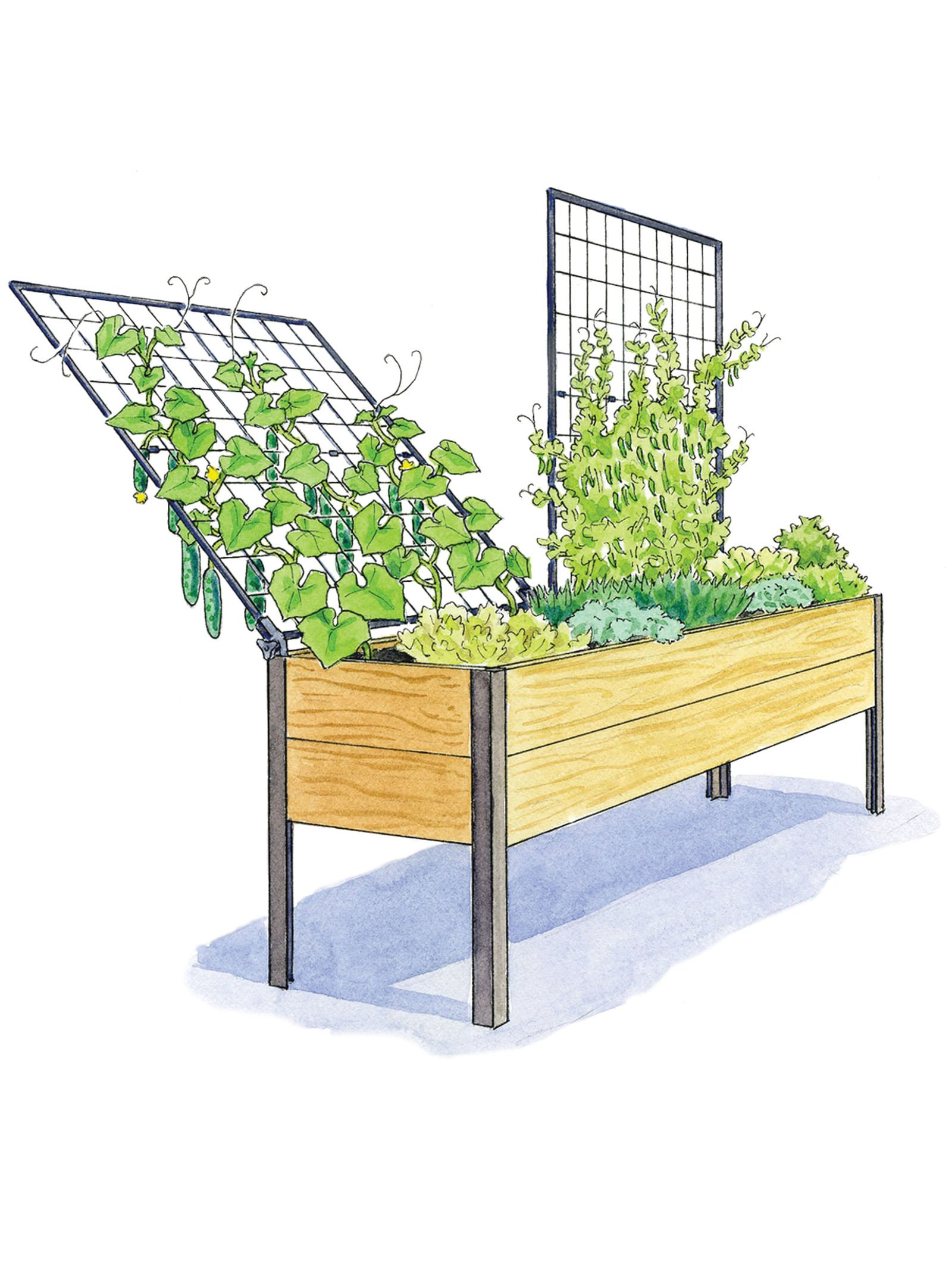 Elevated Cedar Planter Box and Space-Maker Pivoting Trellis Set, 2 x 8