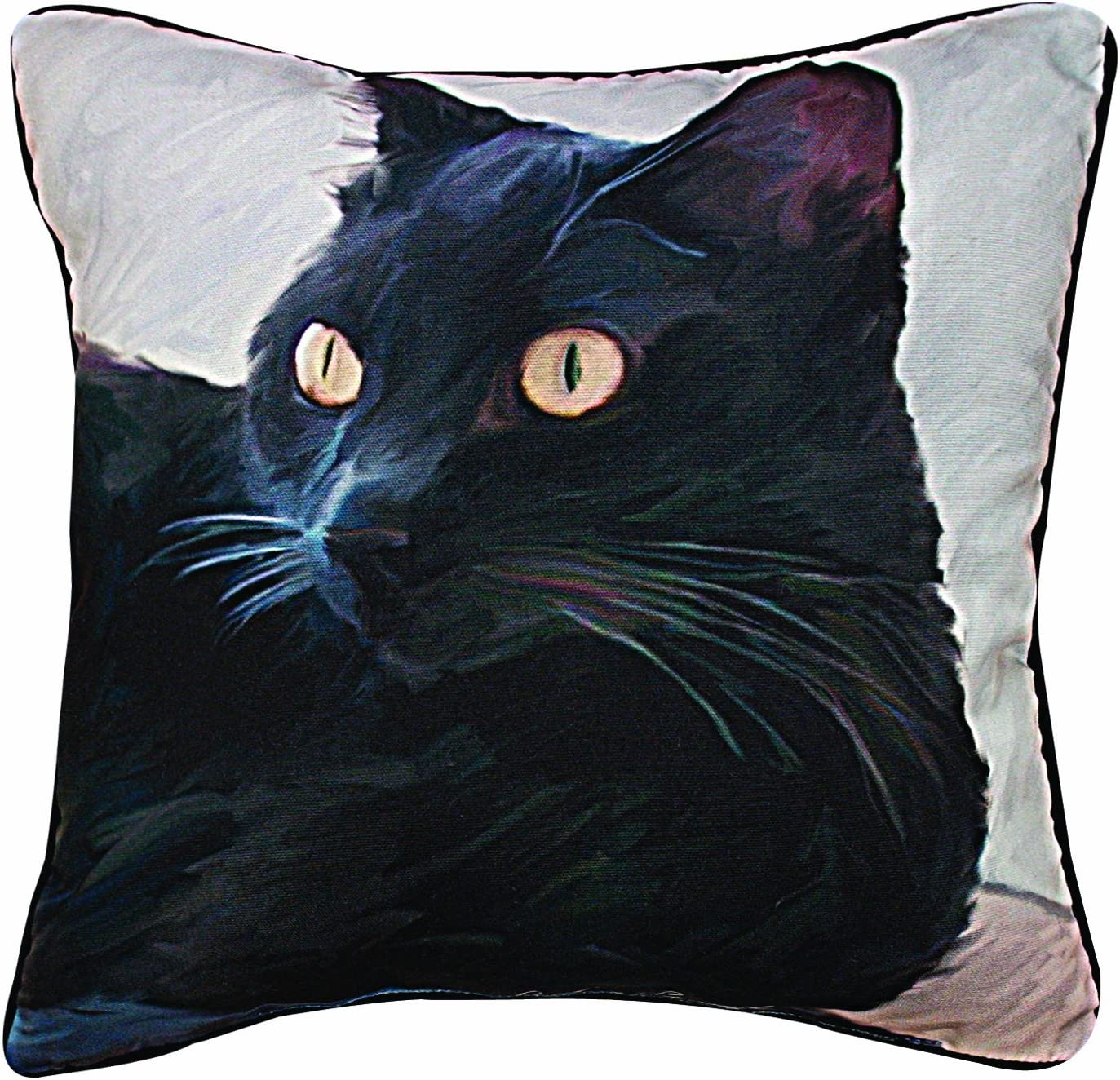 Manual Black Cat Portrait Paws and Whiskers Decorative Square Pillow, 18-Inch