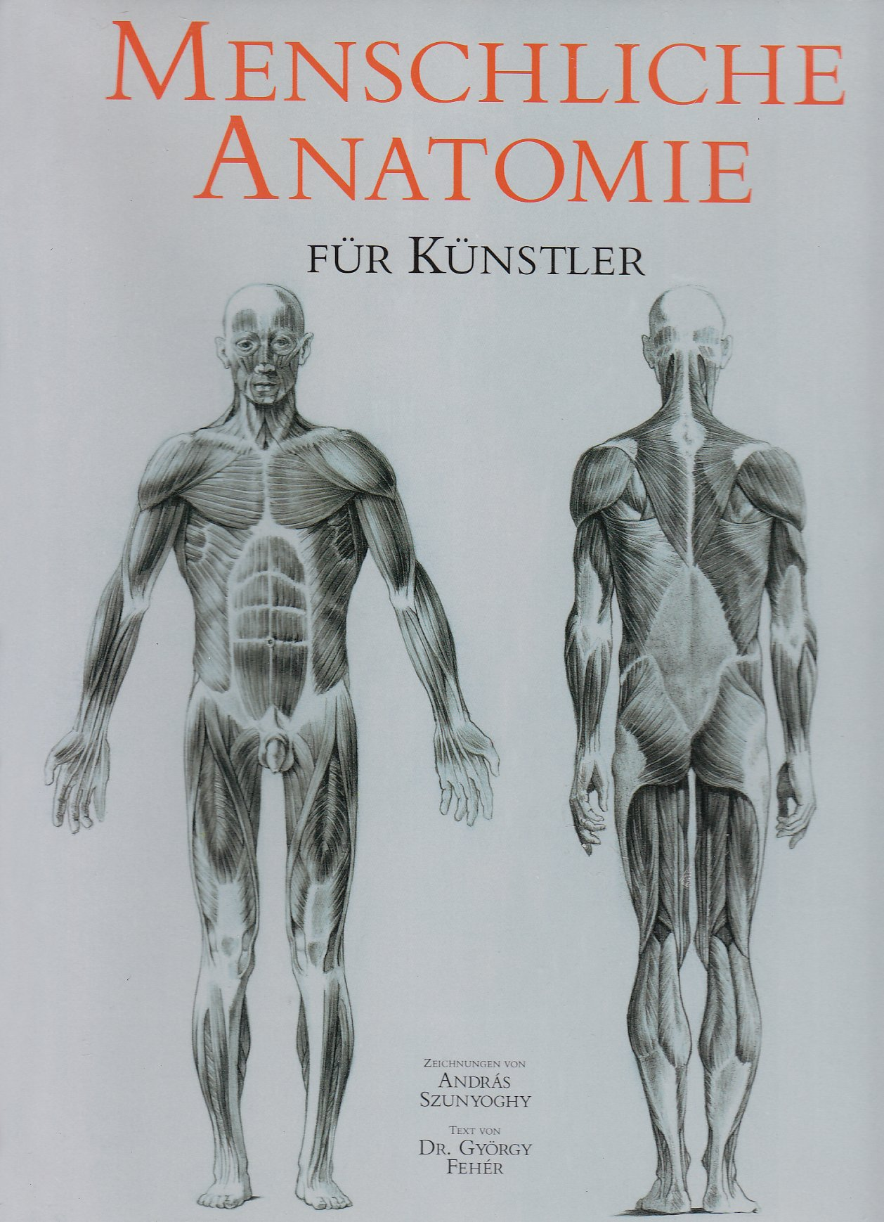 Menschliche Anatomie für Künstler: Amazon.de: Andras Szunyoghy ...