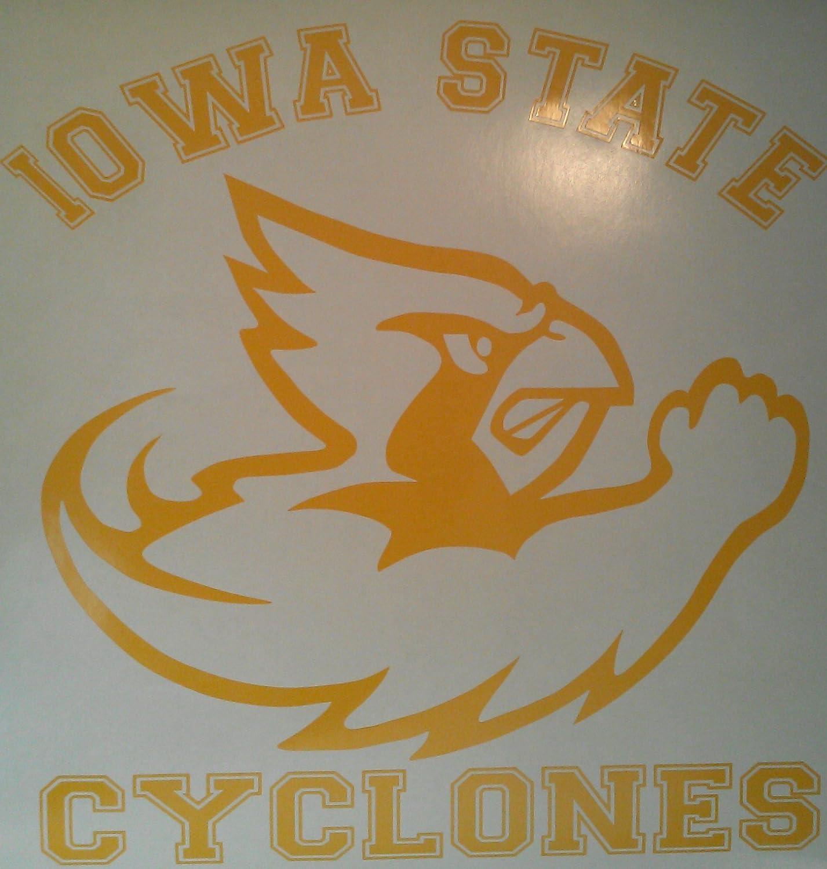 "Set Of 2 Iowa Hawkeyes NCAA Vinyl Bumper Sticker Decal Truck Laptop Car 3/""X2/"""
