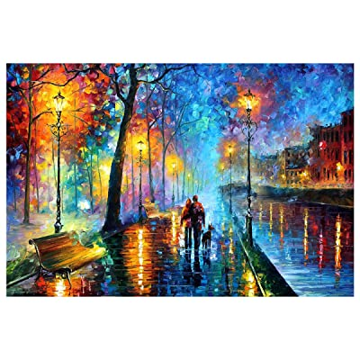 SOONHUA 300 Pieces Wooden Jigsaw Puzzles Walk in The Rain Puzzles Adults Decompression Toy Kids Educational Puzzles Toy: Health & Personal Care