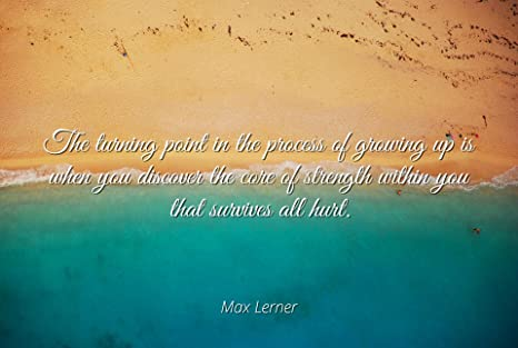 Amazoncom Home Comforts Max Lerner Famous Quotes Laminated