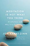 Meditation is Not What You Think: Mindfulness and Why It Is So Important (Coming to Our Senses Part 1)