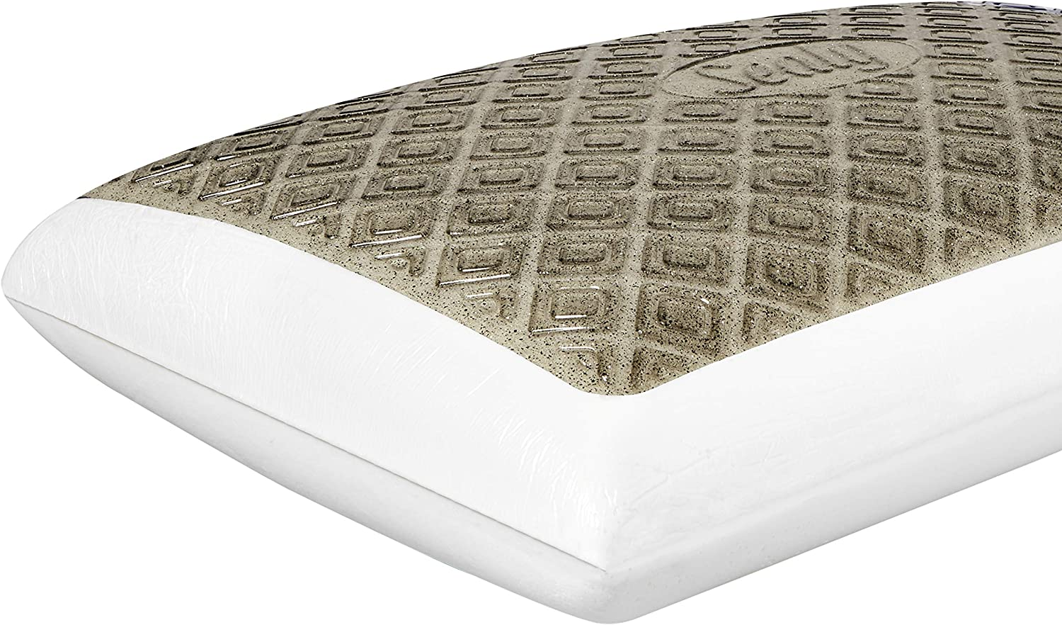 Sealy Charcoal CoolGel Memory Foam Standard Size Bed Pillow, White