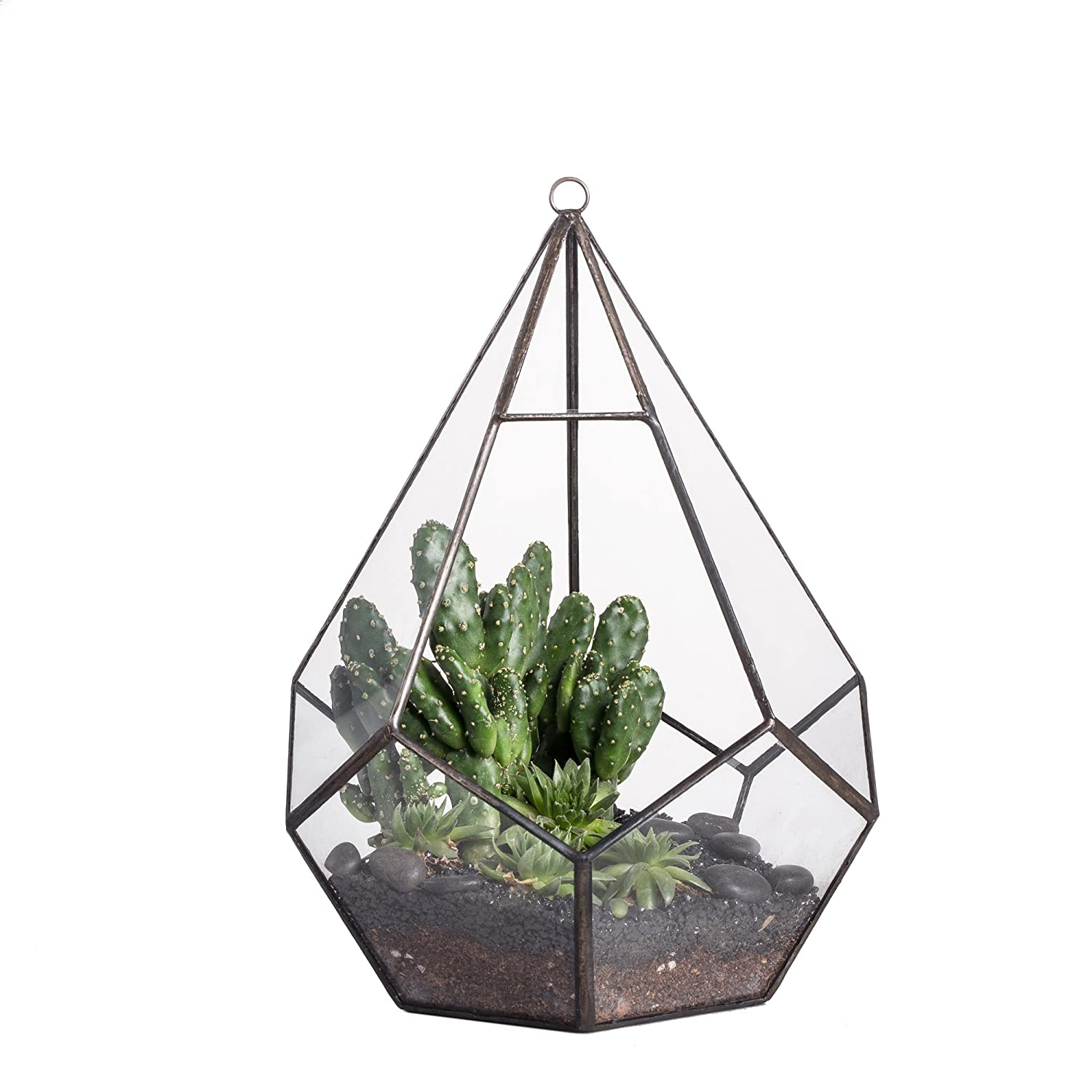 1 Face Opening Modern Wall Hanging Geometric Polyhedron Diamond Teardrops Shape Clear Glass Plant Terrarium Planter (5 Faces Triangle with 6 Faces Pentagon) 6.8 x 6.8 x 8.6inches (9inches with loop)