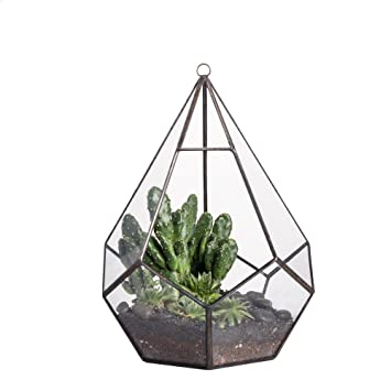 Delightful Modern Indoor Opening Wall Hanging Glass Geometric Terrarium Polyhedron Diamond  Teardrop Shape Pot Tabletop Window Sill Photo