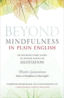 Amazon mindfulness with breathing a manual for serious beyond mindfulness in plain english an introductory guide to deeper states of meditation fandeluxe Images