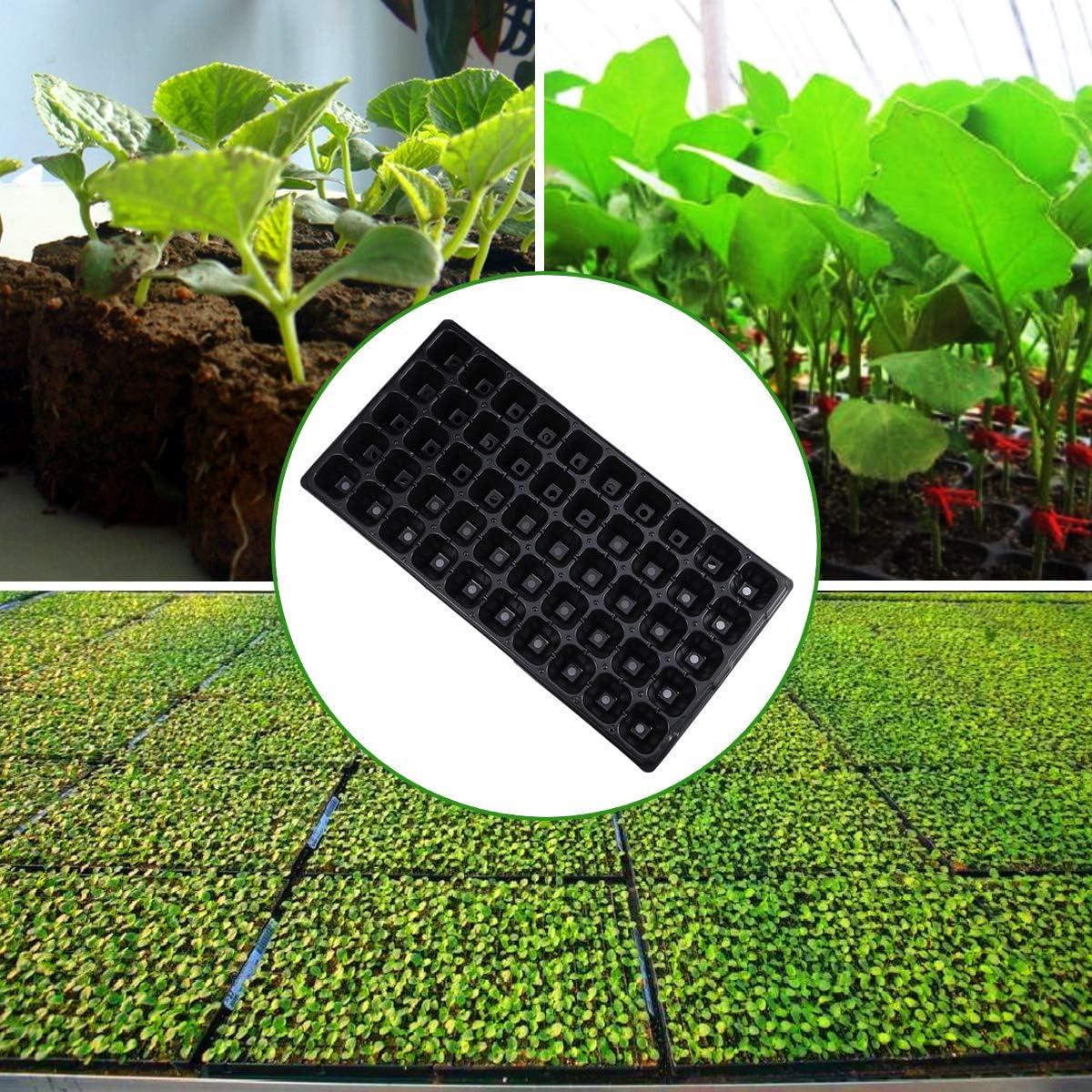 LIOOBO 5pcs 50 Trous Simple Mini Plante succulente Pot Plateau de semis Plateau pour l/égumes Succulents