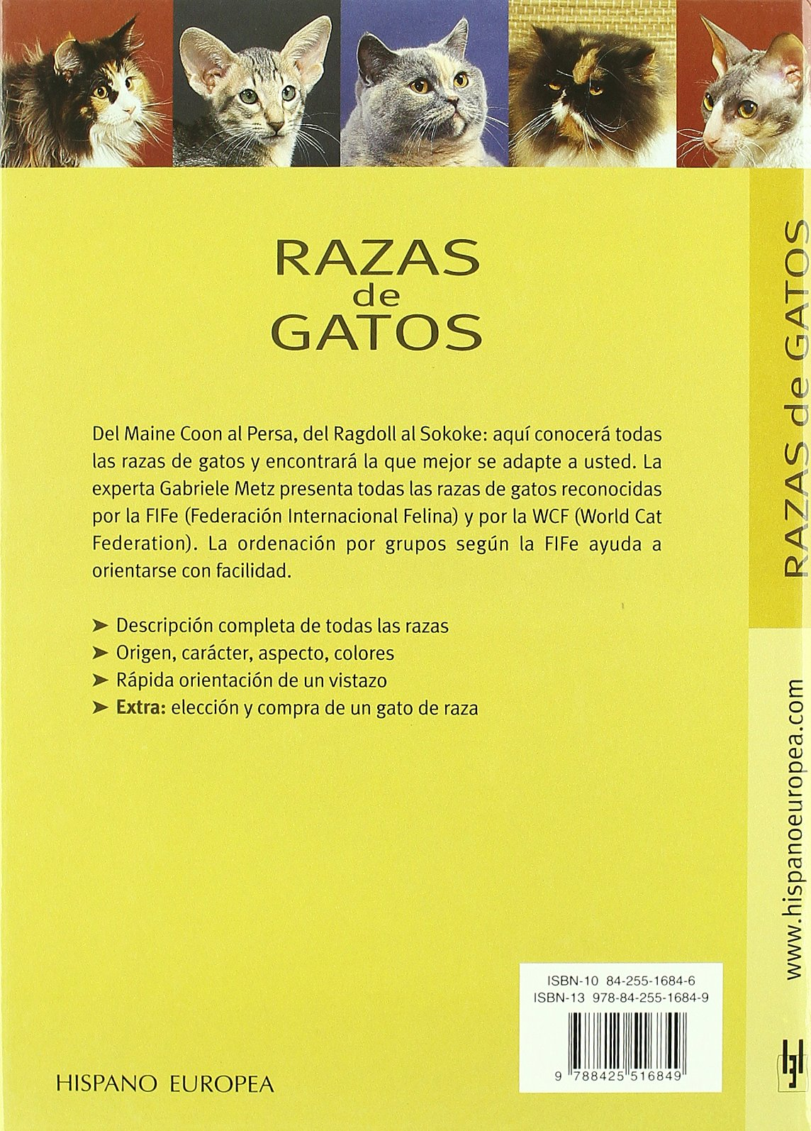 Razas de gatos / Cat Breeds: Todas las razas y todos los colores / All Breeds and All Colors (Spanish Edition): Gabriele Metz: 9788425516849: Amazon.com: ...