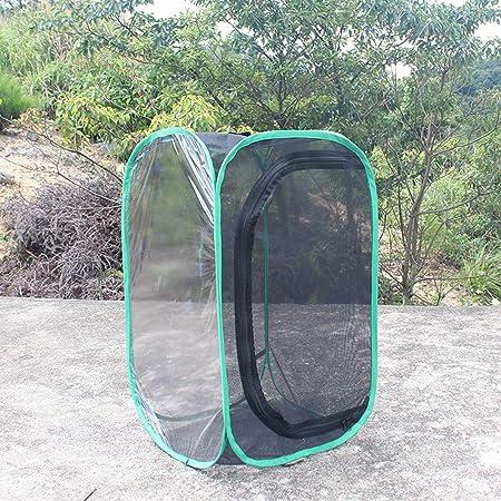 KUANDARMX Insecto y Mariposa Hábitat Jaula Jardín de Mariposas Plegable Terrario Pop Up, B: Amazon.es: Hogar
