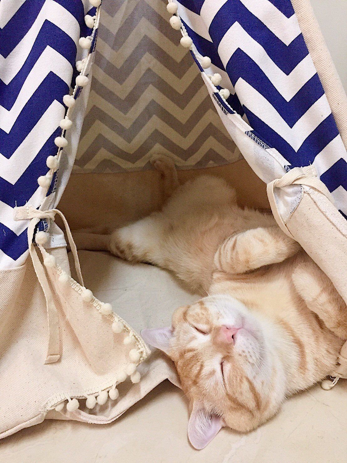 THAI Pet Teepee Handmade Size S_38x38x70 cm TP005 Pet teepee, Dog teepee, Cat teepee, Cat bed, Dog bed, Dog tent and Dog house FREE pet toy for all purchase! Pet toy made from 100% cotton and ha by WilaaMalin (Image #1)