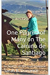 One Pilgrim of Many on The Camino de Santiago: In Search of Spiritual Renewal Kindle Edition