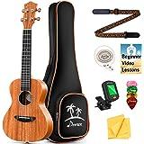 Donner Concert Ukulele Mahogany 23 Inch Ukelele Starter Bundle Kit with Free Online Lesson Gig Bag Strap Nylon String Tuner P