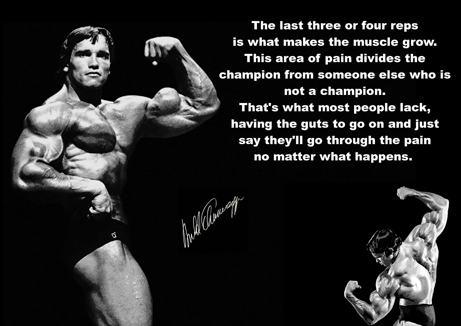 High Quality Inspirational Motivational Quote Sign Poster Print Picture Arnold  Schwarzenegger Signed SPORTS,LIFE,BOXING, CYCLING, ATHLETICS, BODYBUILDING,  TRIATHLON ...