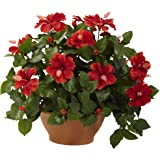 Nearly Natural 6735 Hibiscus Artificial Plant with Clay Planter, Green/Red